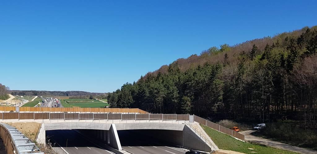Beispiel einer Grünbrücke (hier: über die A 8)