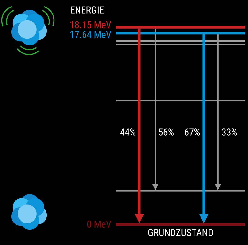 Wenn Atomkerne Energie aufnehmen, vibrieren sie mit einer bestimmten Frequenz. Nach kurzer Zeit geben sie die Energie ab und fallen mit einer gewissen Wahrscheinlichkeit in den Grundzustand.