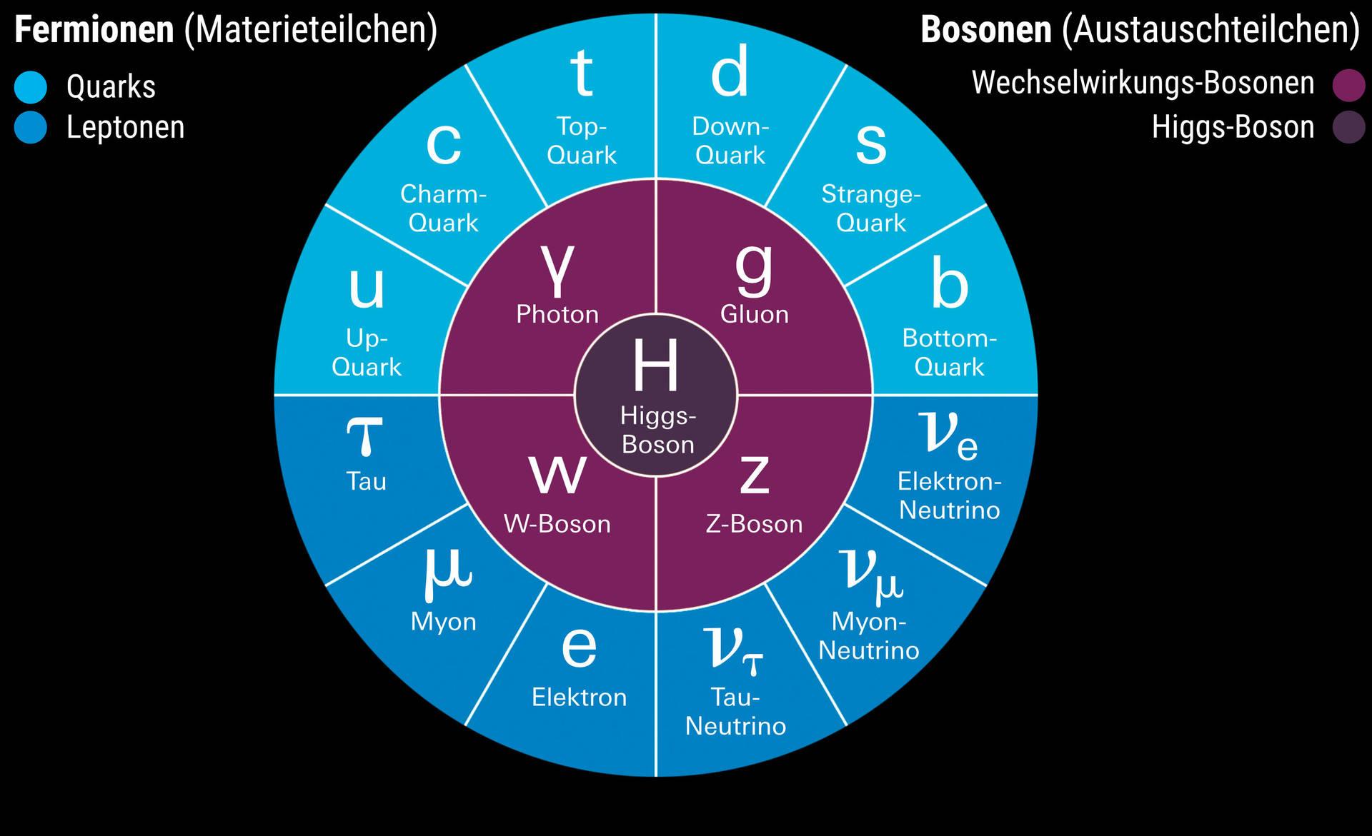 Das »Standardmodell« der Teilchenphysik beschreibt alle bekannten Elementarteilchen: Materieteilchen (Fermionen), Austauschteilchen (Bosonen) und das Higgs-Teilchen, das die Masse der anderen erklärt.