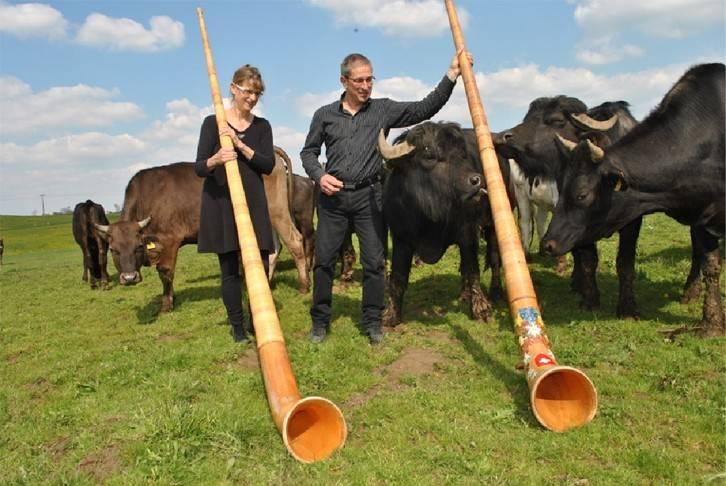Karin Delessert und Helmut Rauscher haben ein wenig gebraucht, bis sie herausgefunden haben, wie Büffel ticken.