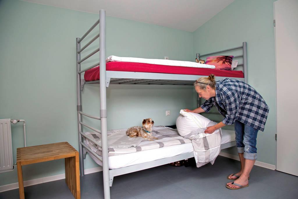 Silke N. durfte ihren Hund pooky mitbringen in die Unterkunft Harburg-Huus. Seit Jahren begleitet er sie durch dick und dünn.